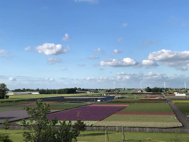 Het prachtige uitzicht over onze kwekerij